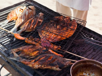 Mexico Beach Barbecue Baja Sea of Cortez Cortes Yacht Charter